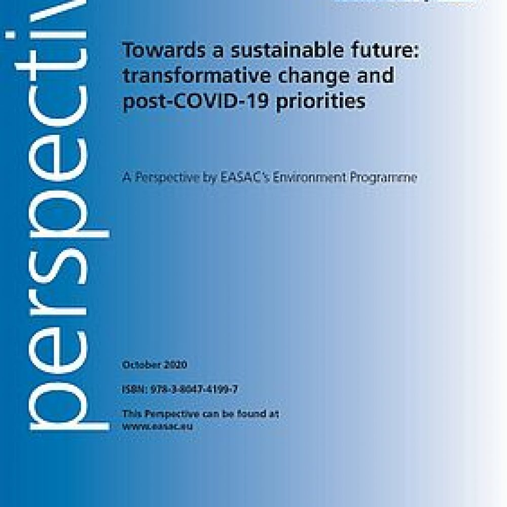 Towards a sustainable future: transformative change and post-COVID-19 priorities
