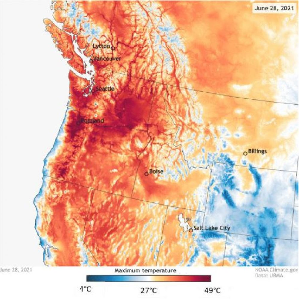 Hitzewelle im Westen Nordamerikas (Juni/Juli 2021)