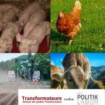 Agrarwende2035 – Transformateure treffen Das PolitikLabor